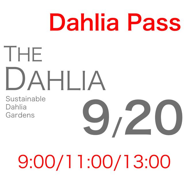 9月20日「THE DAHLIA」摘み採り園チケット