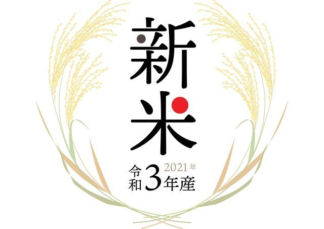 【五百川】 3kg 令和3年産 新米 千葉県産(鴨川市)五百川