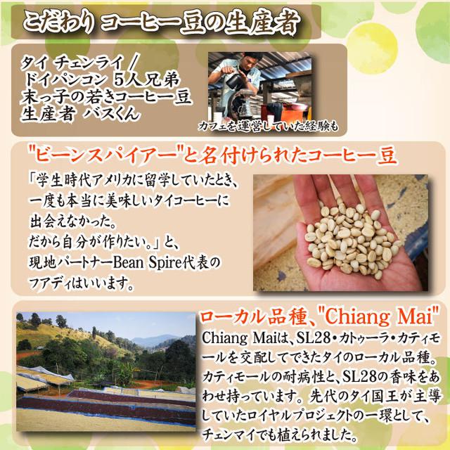 5種類コーヒー豆飲み比べセット100g×各1袋 ウミノネ シーズナル ブレンド(グアテマラ・エチオピア・タイ)  インドネシア エチオピア