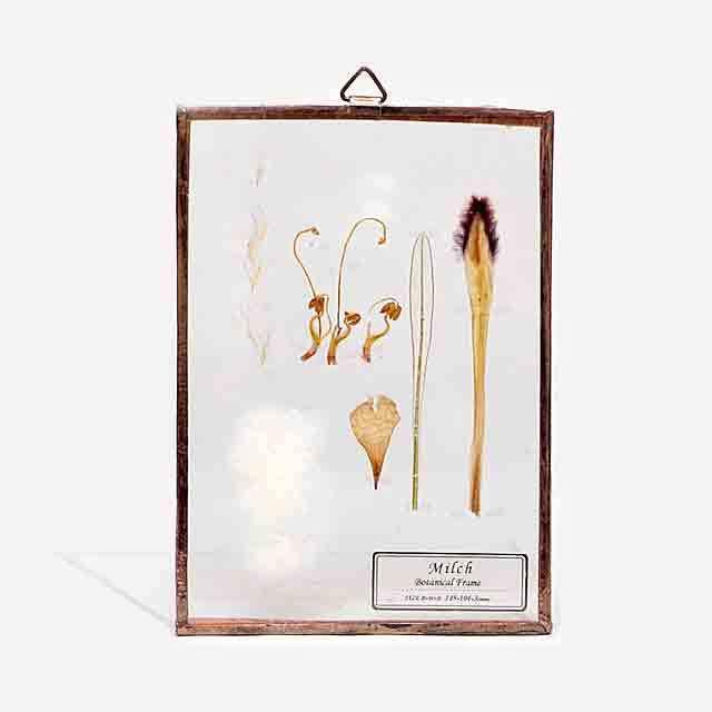 Botanical Frame S25 - Gold