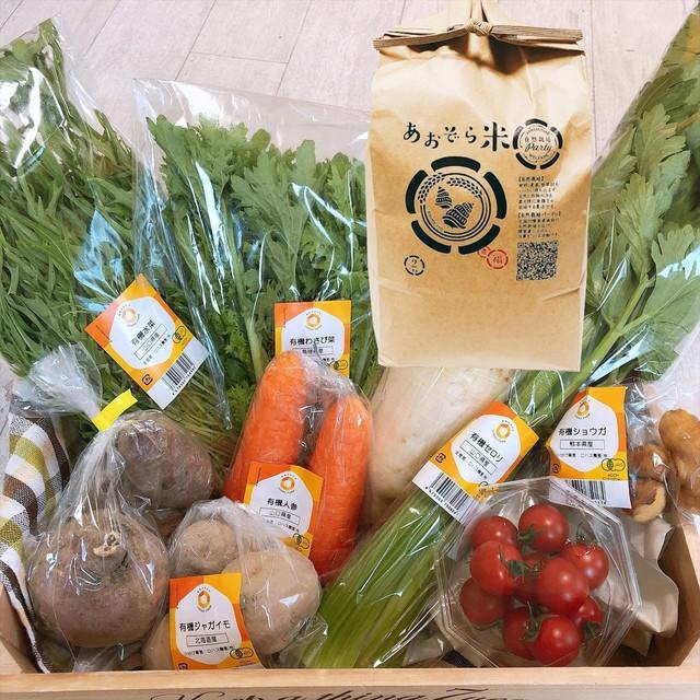 【自然栽培、農薬&化学肥料不使用】特選野菜セット+あおぞら米 朝日 玄米 2kg  [送料無料]