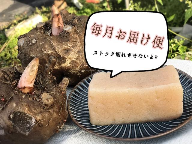 毎月お届け!生芋こんにゃく5個〔美味しく食べて肌活・腸活!〕