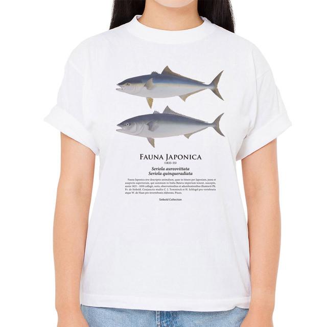 【ヒラマサ・ブリ】シーボルトコレクション魚譜Tシャツ(高解像・昇華プリント)