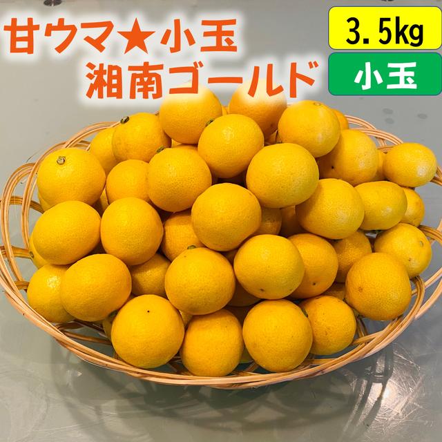 送料無料 甘ウマ☆小玉・湘南ゴールド 3.5kg