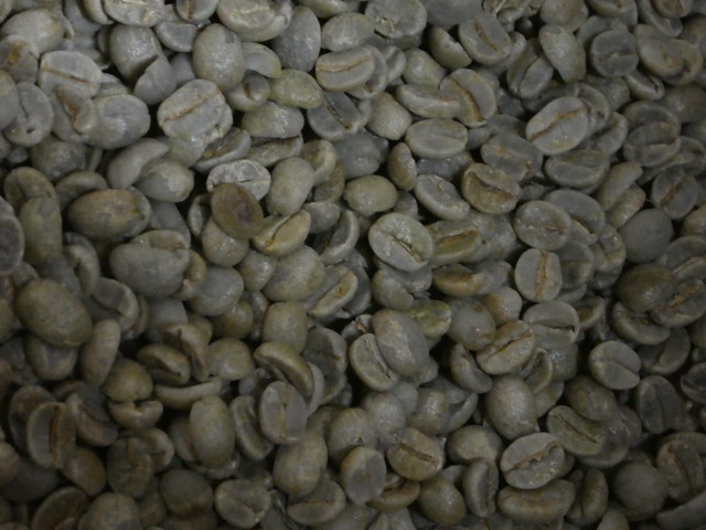生豆 ブラジルサントスNo2 17/18 10KG  (税込価格)