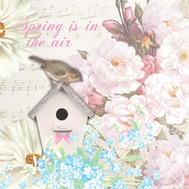 入荷しました|2020春夏【Paper+Design】バラ売り2枚 ランチサイズ ペーパーナプキン BIRD HOUSE ピンク