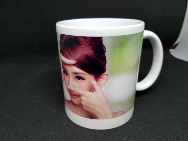 【稀なデザイン大歓迎!】お好きな写真からオリジナルマグカップ作ります【ゆうパック配送】