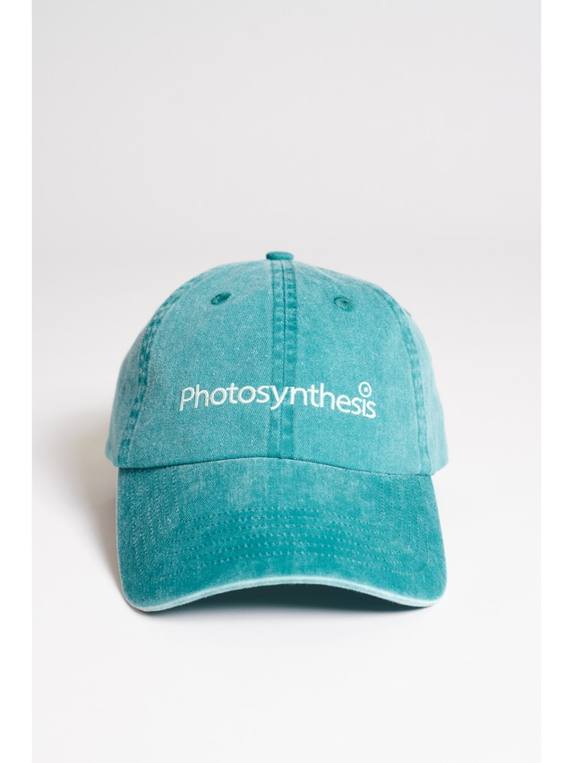 P.A.M. (Perks And Mini) / PHOTOSYNTHESIS VINTAGE WASHED BASEBALL CAP
