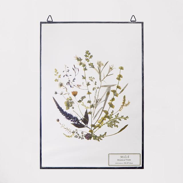 Botanical Frame L24 - Black