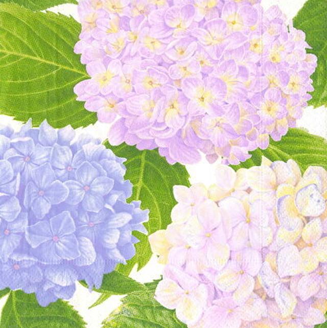 新入荷【Caspari】バラ売り1枚 ランチサイズ ペーパーナプキン HYDRANGEA GARDEN ラベンダー