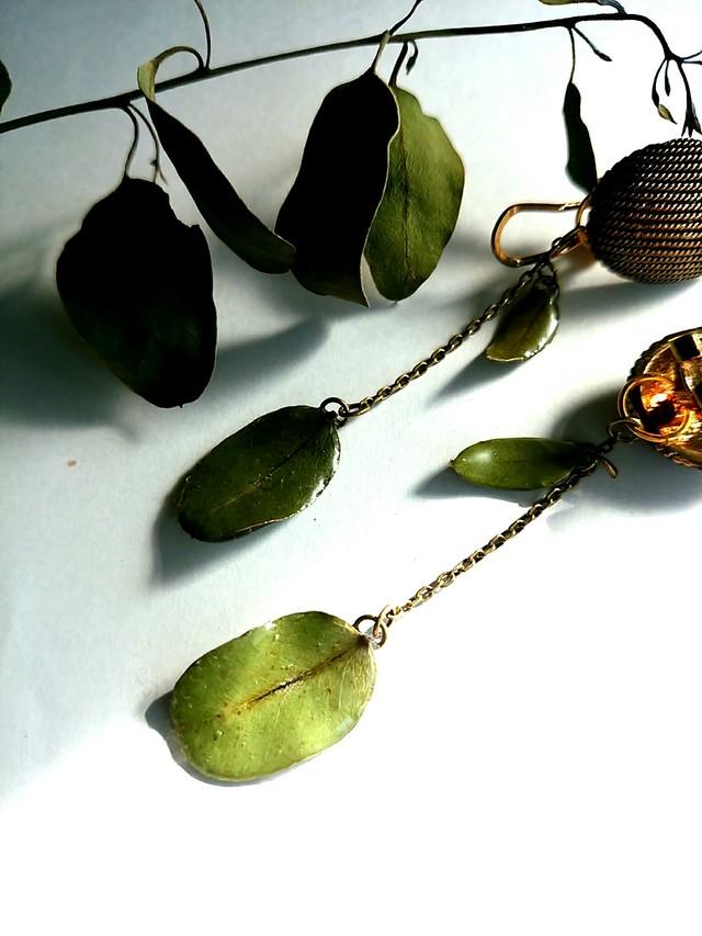 本物のユーカリの葉ヴィンテージ風ピアス