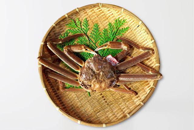 鳥取の冬の味覚「松葉がに」中サイズ・タグ付き(0.9kg) 送料無料