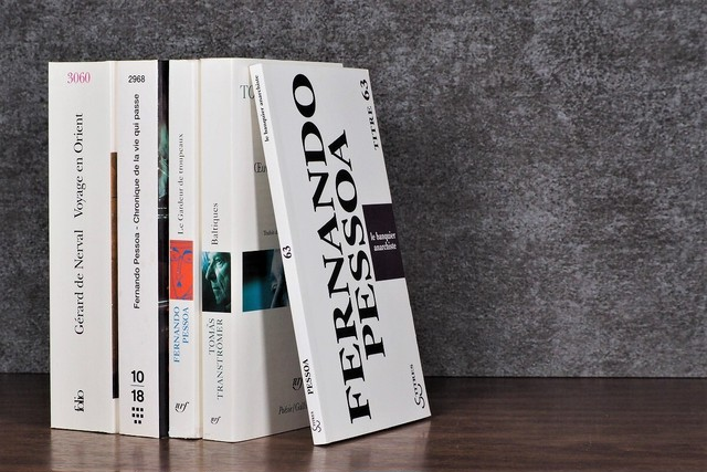 【SPECIAL PRICE】【DS247】ZwEiG -5set- /display book
