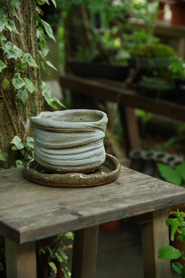 受皿付白釉植木鉢②【水野 良子】
