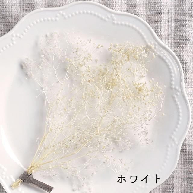 かすみ草(各色)プリザーブドフラワー