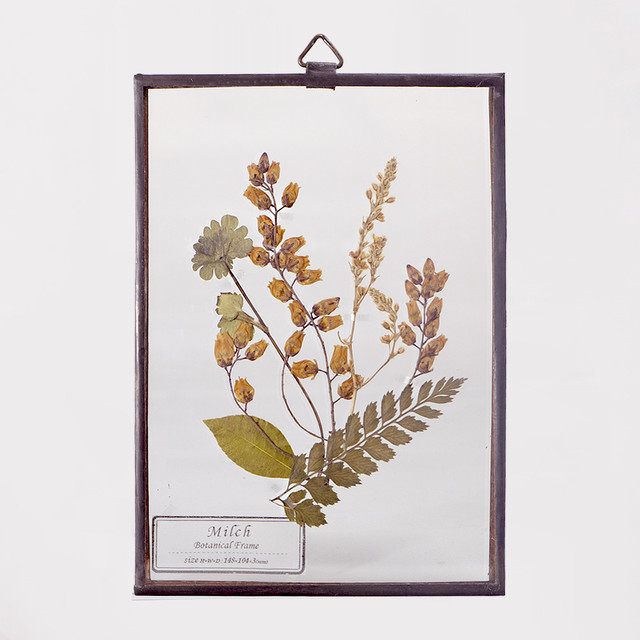 Botanical Frame S033(A_Copper)