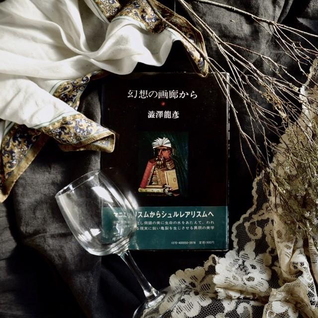 【澁澤龍彦著『幻想の画廊から』】青土社  絶版