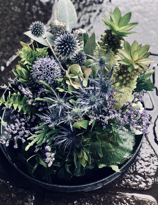 plate green arrange/purple