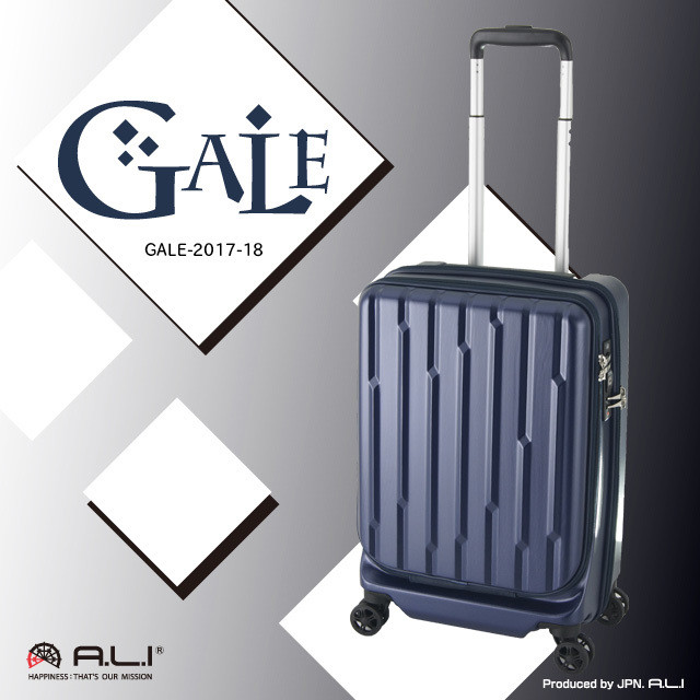 【SALE】GALE  GALE-2017-18 36L 【機内持ち込み対応サイズ】