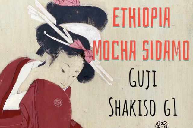 エチオピア モカ シャキッソG1|200g コーヒー豆【ハイロースト】