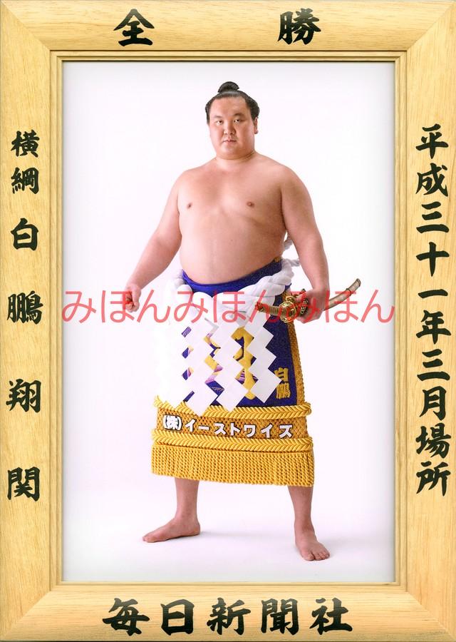平成28年1月場所優勝 大関 琴奨菊和弘関