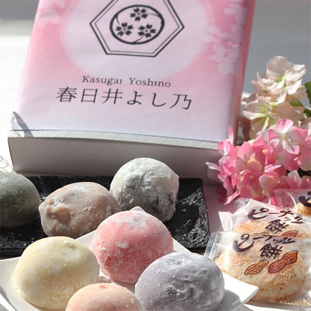 春日井よし乃 人気の和菓子詰め合わせ【オンラインショップ限定】