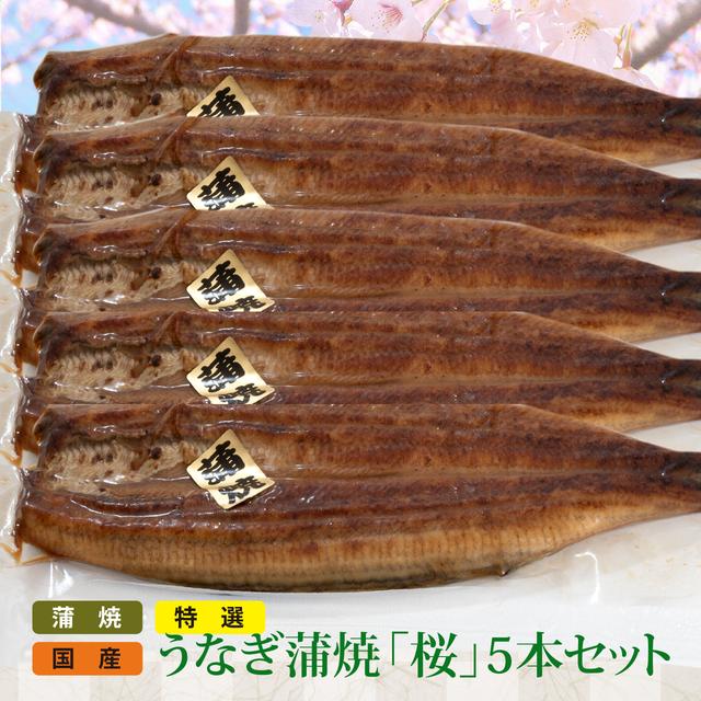 特選 国産うなぎ蒲焼(桜)5本セット