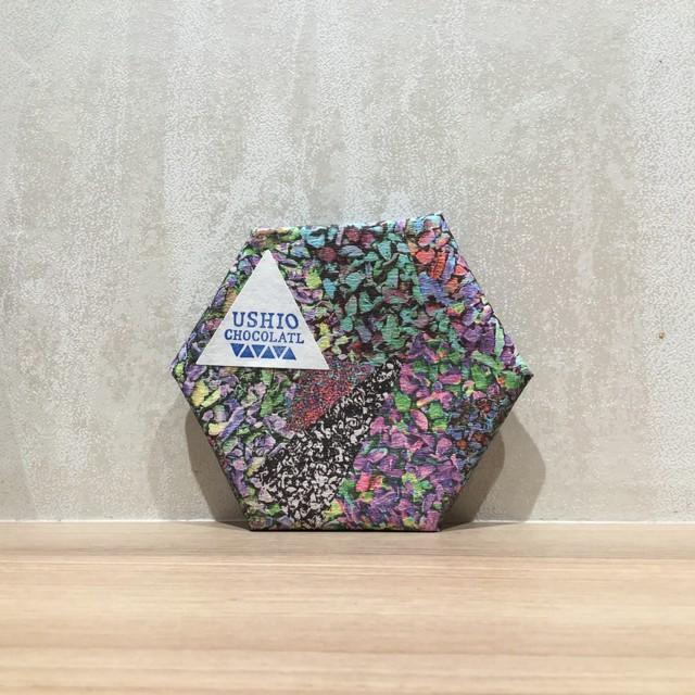 【USHIO CHOCOLATL/ウシオチョコラトル】タンザニア