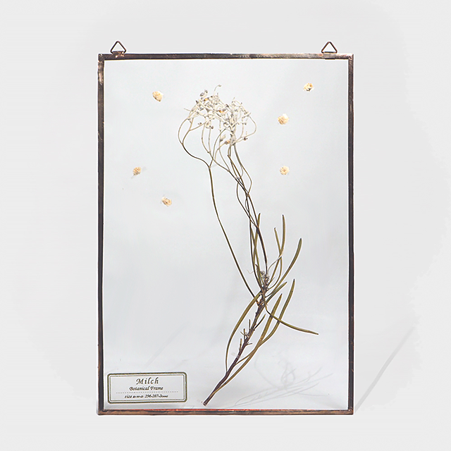 Botanical Frame L012 - Gold