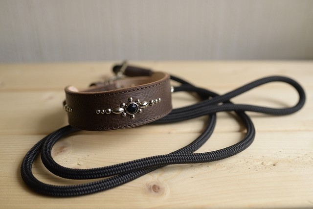 中型犬用のブラウングレーの牛革の首輪と、登山用ロープ(ザイル)リードのセット