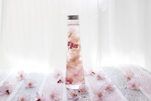 桜と春花のハーバリウム★ピンク