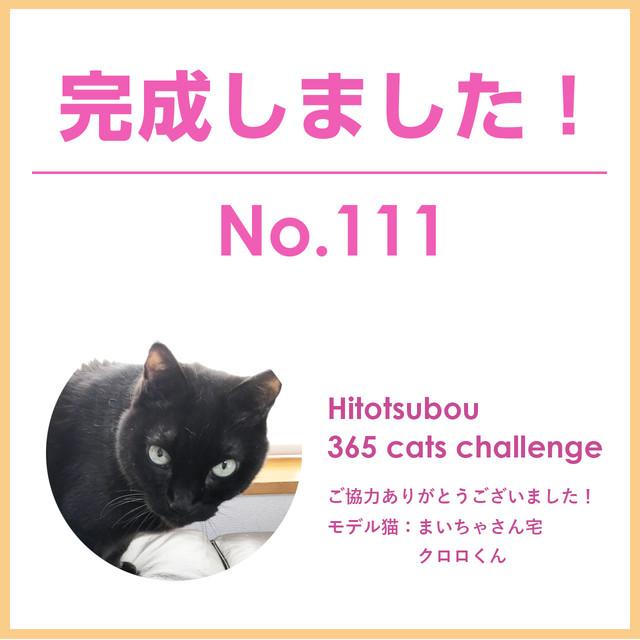 Hitotsubou 365 cats challenge No.111