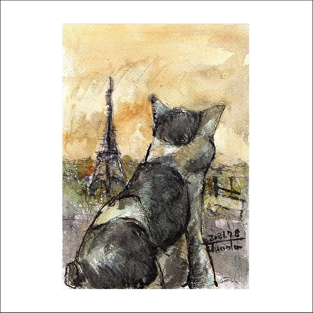 「パリ猫」