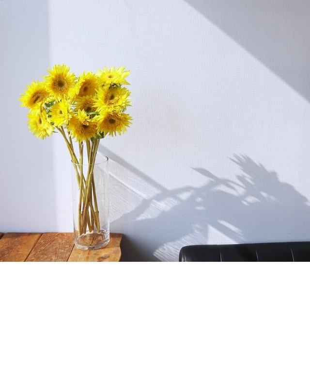 越後中央農協 有名な絵画のと同じ花形 モネのヒマワリ 10本