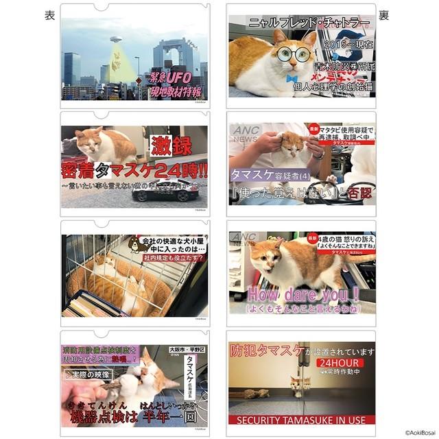 「逮捕ネコ」タマスケ A4クリアファイル 4枚入りBセット