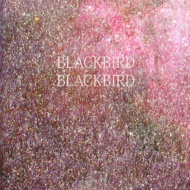 【USED】BLACKBIRD BLACKBIRD / Summer Heart