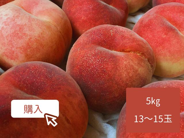 もも【さくら白桃】5kg箱 13〜15玉