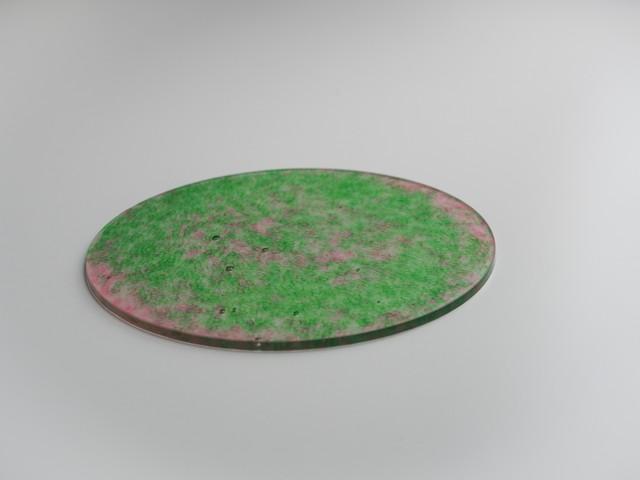 インテリアプレート-CL(黄緑×赤)ip-cl-4