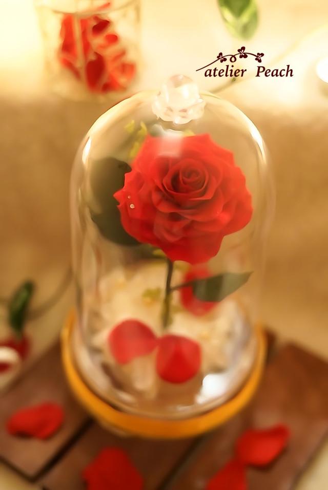 美女と野獣オルゴール付き 「ベルの赤いバラ」アクリルドーム