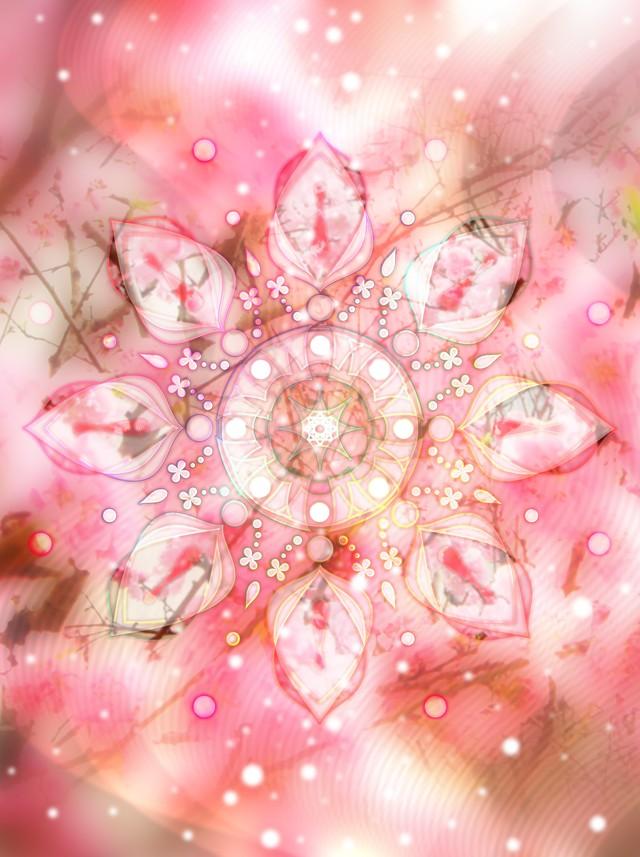 ◯ 桜姫 { グラフィック ART }