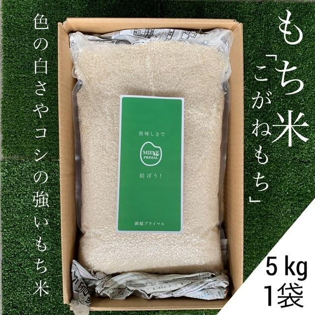 【おうち時間生活応援企画】もち米「こがねもち」5kg(1袋)