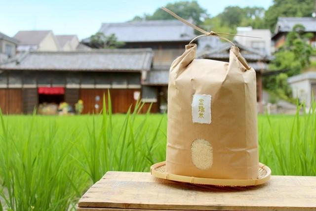 新米【金鵄米/3kg/玄米】きんしまい2020年産ヒノヒカリ:のし対応可