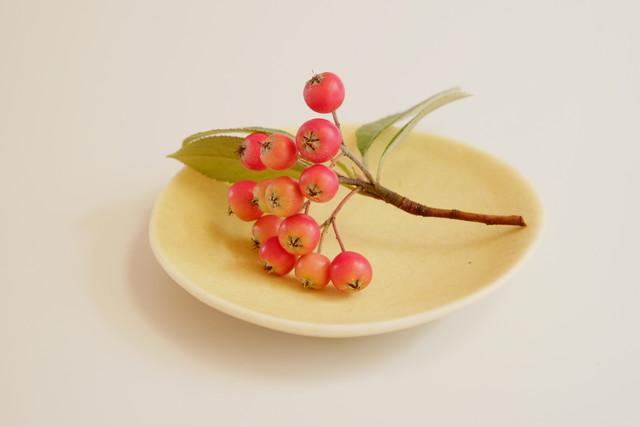 [shell@3 ブルーレイン] 磁器 豆皿 直径8.5cm