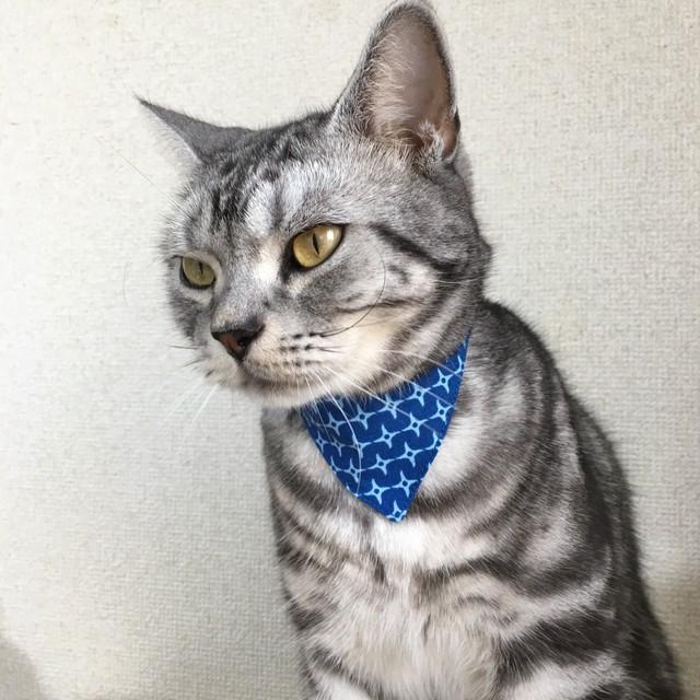 【手裏剣柄】猫用バンダナ風首輪/選べるアジャスター 猫首輪 安全首輪 子猫から成猫