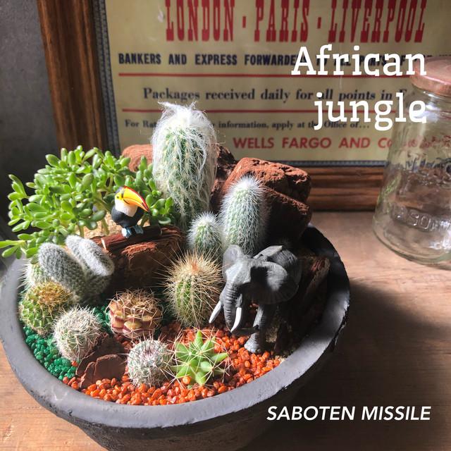 African jungle ゾウ&オオハシ