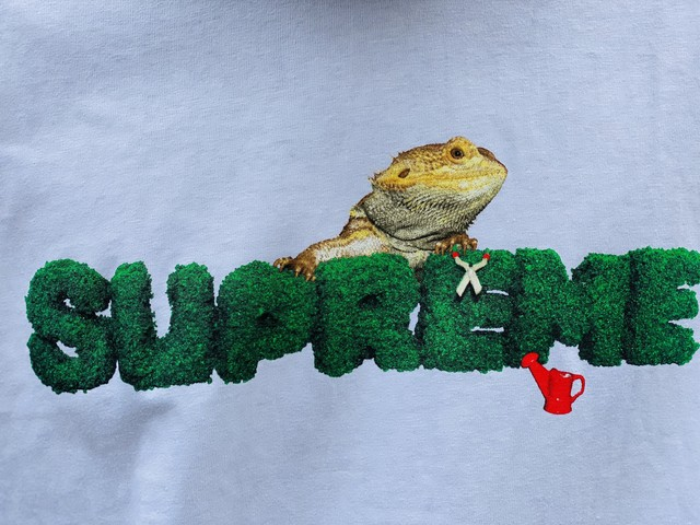 Supreme 20SS LIZARD TEE WHITE LARGE 30JG7313