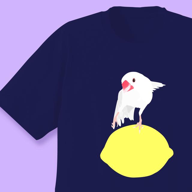 amycco.×ことりちゃん 文鳥ちゃん Tシャツ ネイビー