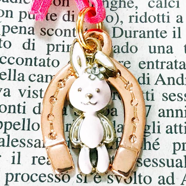 ◆幸運の馬蹄アクセサリー◆ 子宝(こだから・コダカラ)8 兎(うさぎ・ウサギ)「幸せが産まれる・子宝・安産」