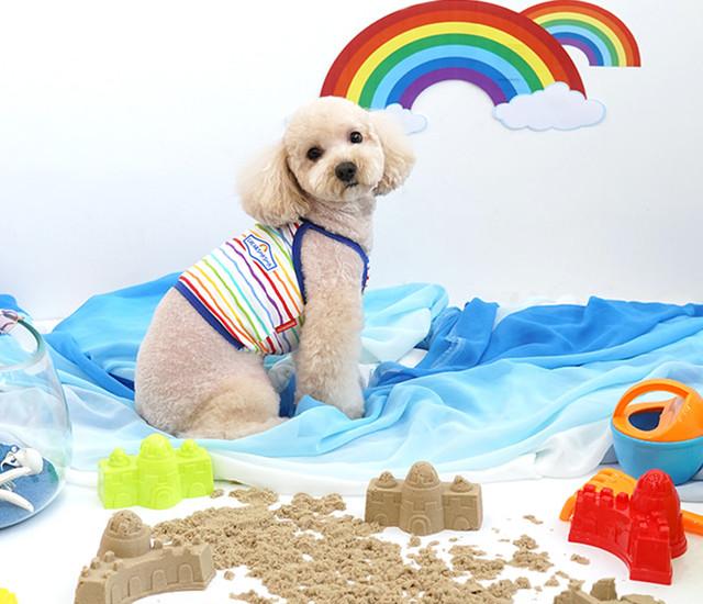 【予約商品5%OFF】rainbow croptop S ~ XL 2color / 犬の服 犬服 新作 ショート丈 お揃い クロップドトップス 小型犬 中型犬 ペット洋服 ドッグウェア ペット用品