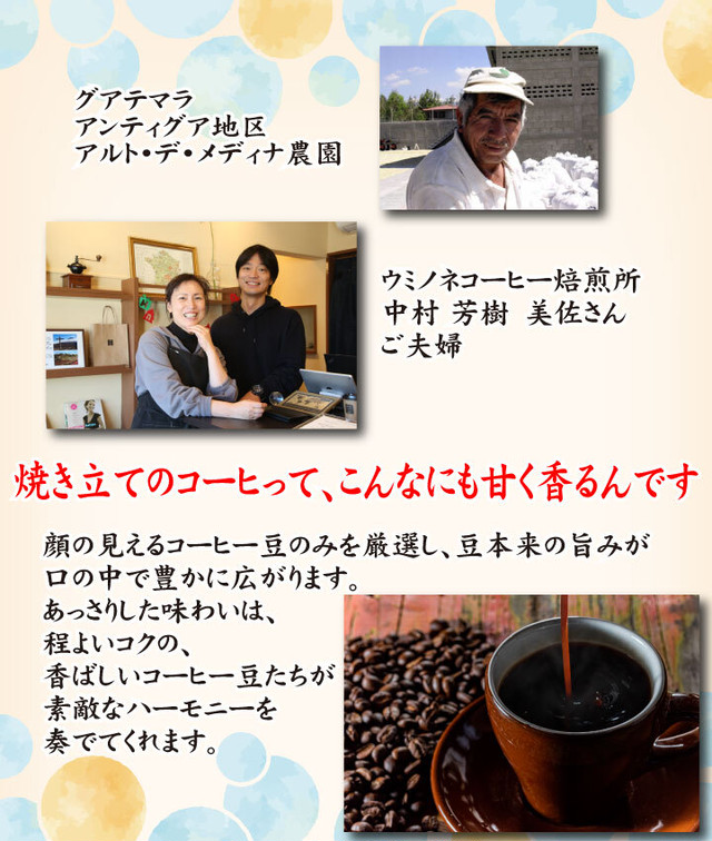 顔の見えるスペシャルティ―コーヒー100g グアテマラ アンティグア ウォッシュド